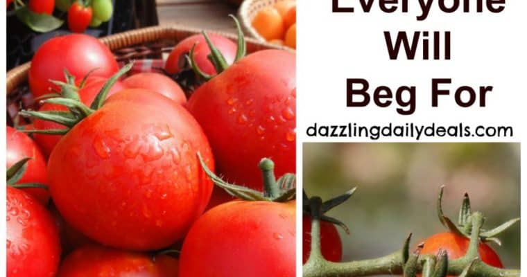 How to Grow Tomatoes Everyone Will Beg For