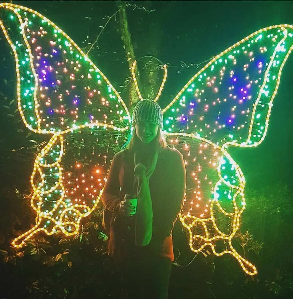 Im a butterfly ZooLightsPDX Hosted    zoo oregonzoohellip