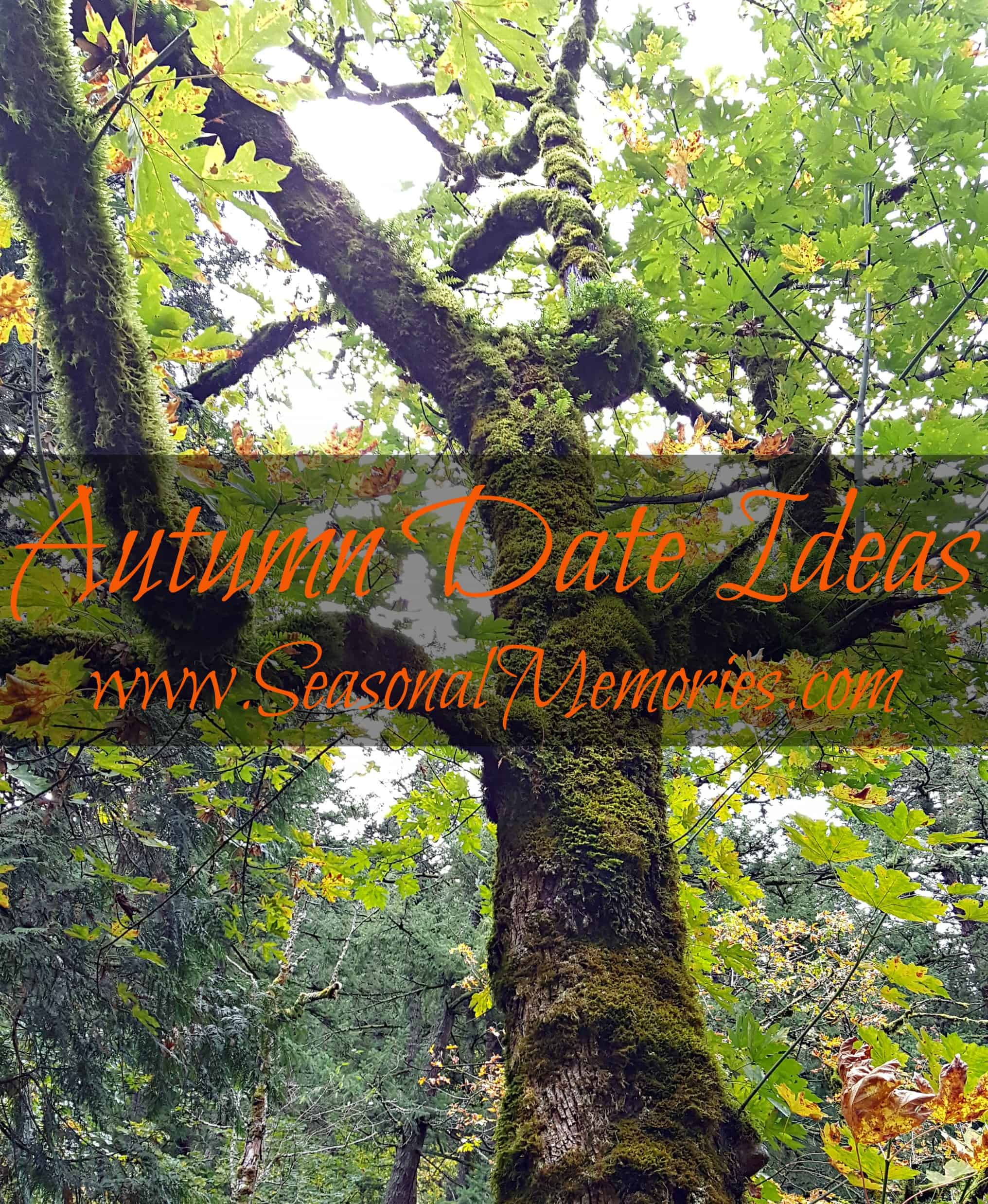 Autumn Date Ideas That Won't Break The Bank