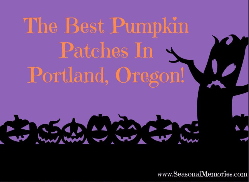 Best Pumpkin Patches In Portland, Oregon